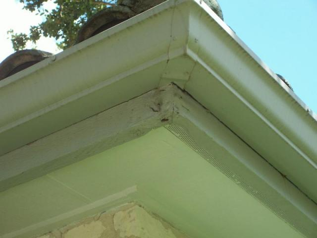 Patched and Painted Cornice Materials