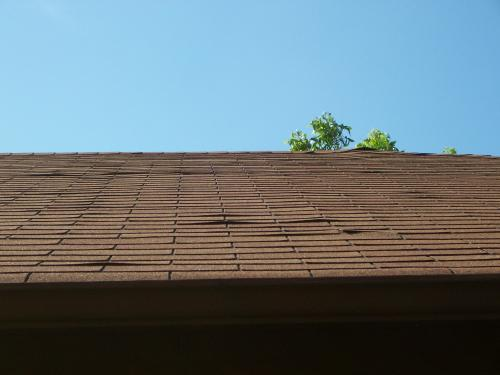 Roofing Condition Jwk Inspections